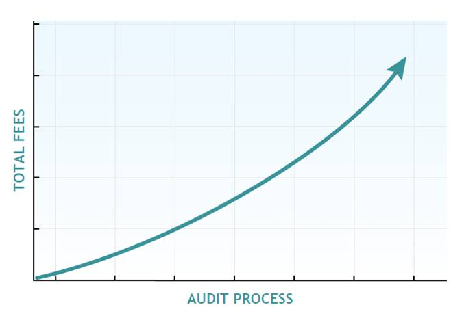 Audit Protection Services Graph